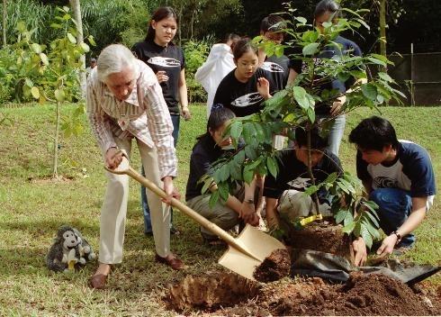 Dr. Jane Goodall mit Mitgliedern des Jane Goodall's Roots & Shoots Programms in Singapur